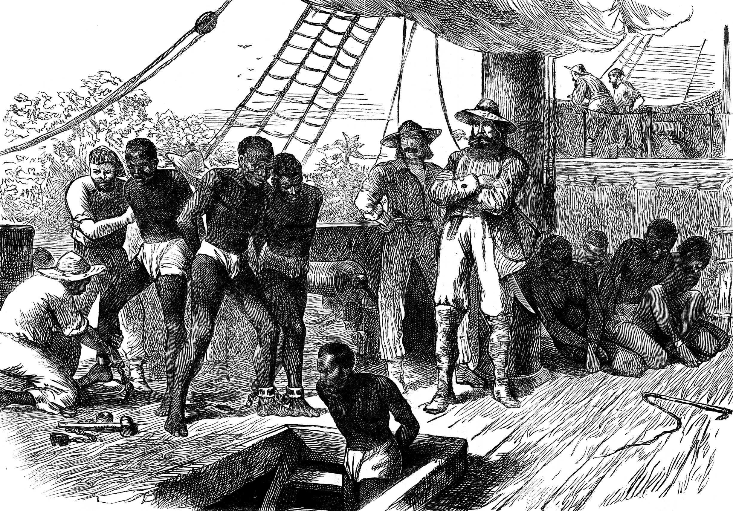 Here Are Seven Things You Probably Didn't Know Were Connected to Slavery